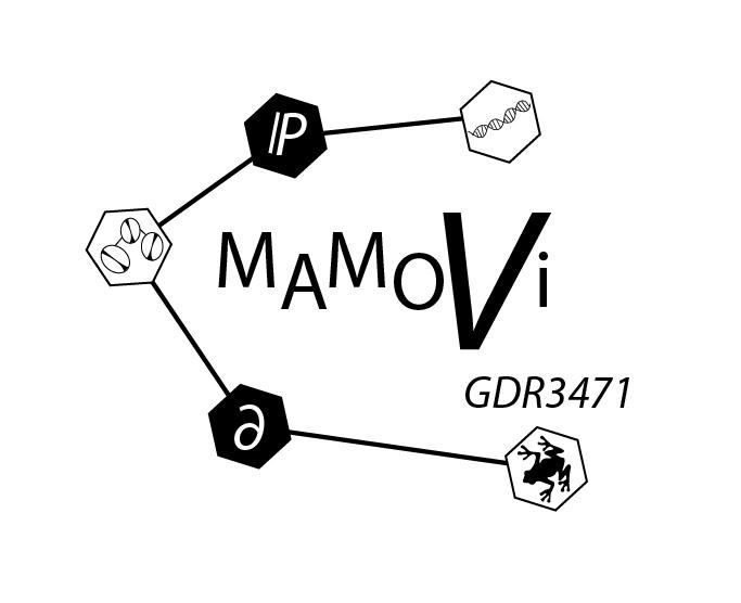 logo_mamovi